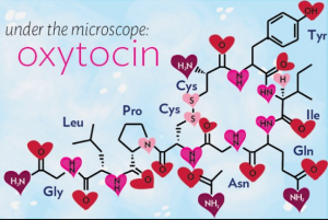 oxytocin and orgasmic customer service