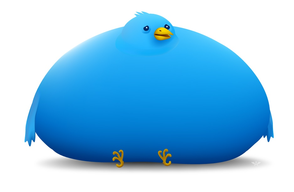 fat twitter bird, infobesity