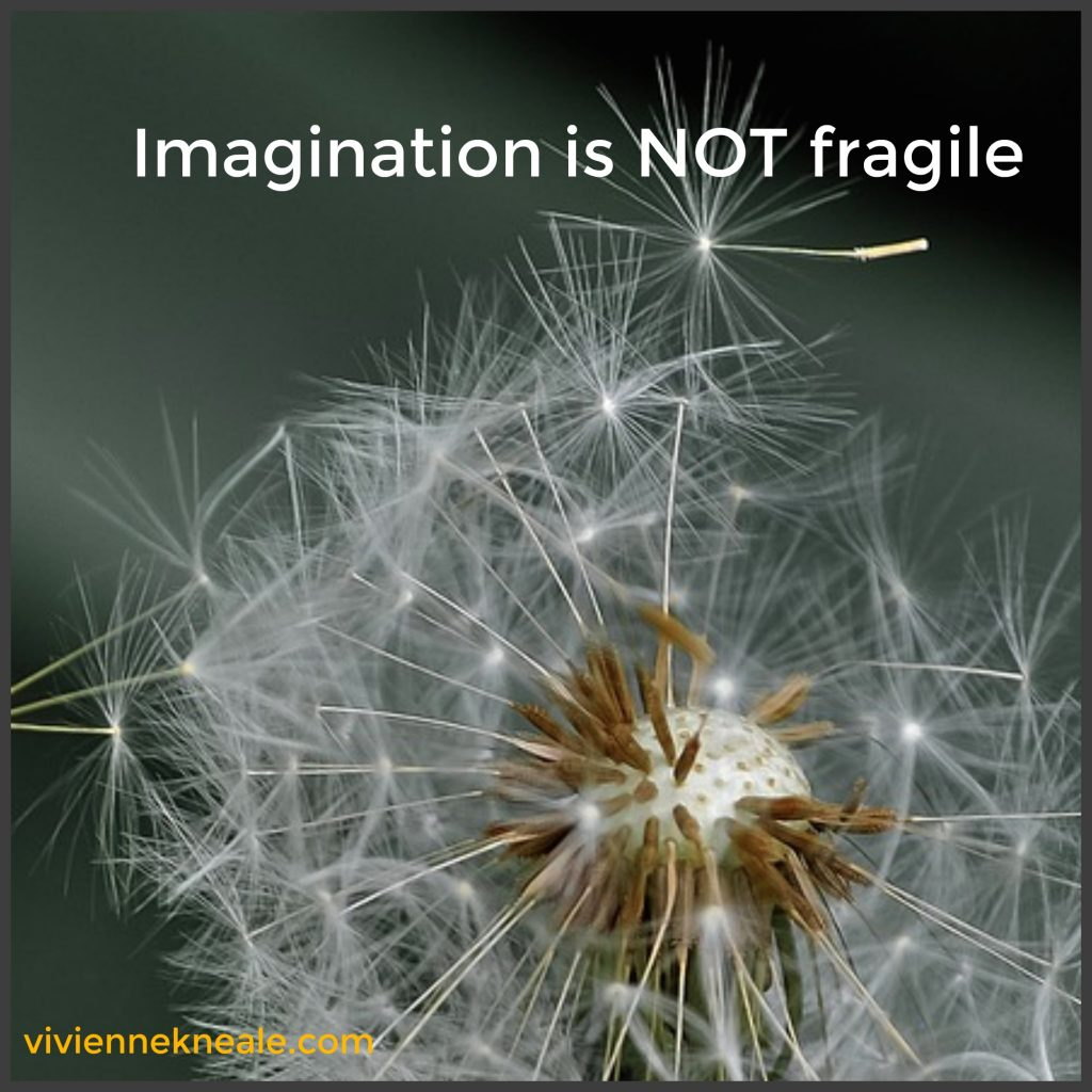 imagination, creativity and criticism